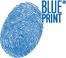 piese Blue print